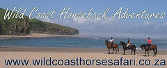 Wild Coast Horseback Adventures