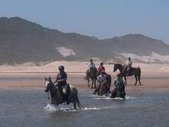 Horse Riding Adventure Holidays in South Africa