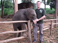 THAILAND: Amazing Volunteer Project Caring for Elephants in Surin!