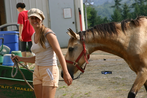 Volunteer with Horses