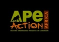 Africa: Gorilla and Chimpanzee Conservation Project in Cameroon