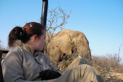 Game Ranger Guide Course - South Africa