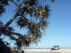 A Different Kind of Isle: The Natural Wonder of Fraser Island