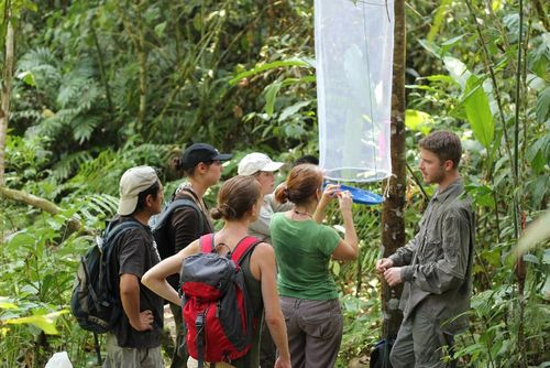 Volunteer Projects in Peruvian Amazon