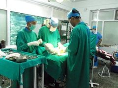 Gap Year Medical Internships in Palampur, India