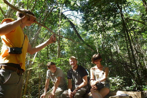 Group Conservation Volunteer Projects Abroad