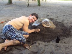 Costa Rica: Turtle and Wildlife Conservation