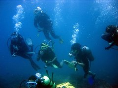 Open Water Course + 1 Week Hotel, Sharm el-Sheikh, Egypt