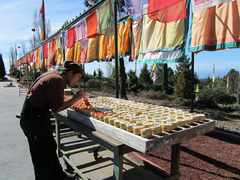 Live and work at Buddhist Retreat Center in California