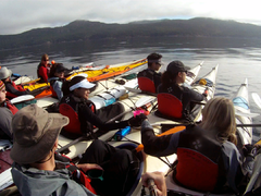 Canada Kayak with Orcas