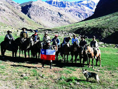 Working with Chilean Cowboys in the Mountains