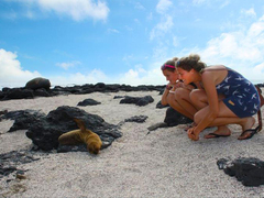 Galapagos Experience: 3 Islands, 3 Weeks - Island Hop and Volunteer!