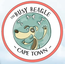 Best Volunteer Organisations in Cape Town
