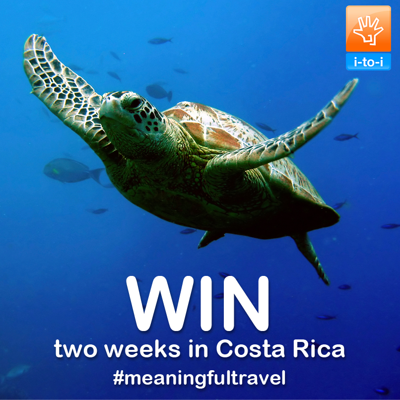 Competition: Win a Trip to Help Turtles in Costa Rica