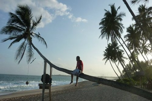 6 Things to Make Your Trip to Goa Special