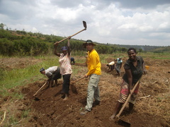 Agricultural Project in Rwanda - from just US$20 per day!
