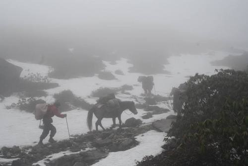 6 Things to Expect When Trekking in the Himalayas