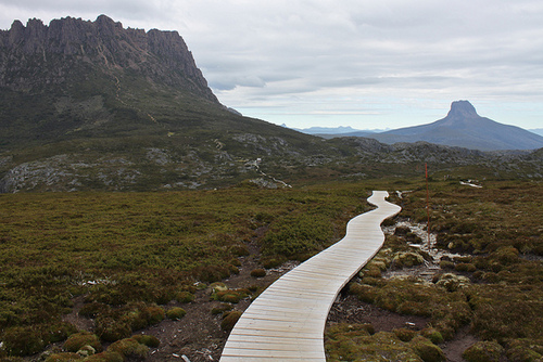 Top 5 Highlights of Tasmania