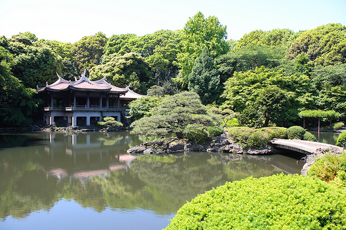 10 of the Best Experiences in Tokyo