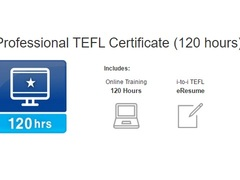 Professional Online TEFL Certificate (120 hours)