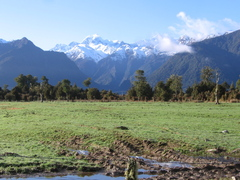 New Zealand South Island: Scenic Locations to Visit by Car