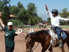 Equine Therapy Volunteer Projects Abroad
