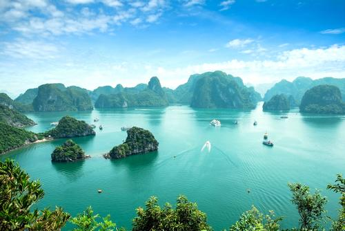 Vibrant Vietnam: Culture, Conservation & Nature Tour