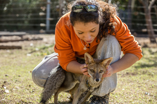 Animal Care in Argentina