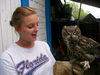 Animal Care Volunteering in Mexico