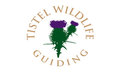 Tistel Wildlife Guiding