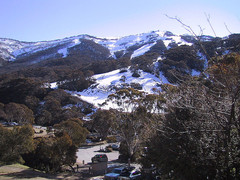 Best Ski Resort in Australia