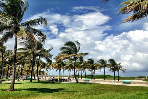 4 Great Reasons to Move to Miami