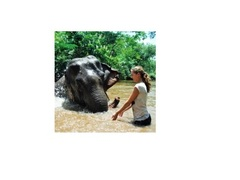 Ethical Elephant Project, Surin, Thailand