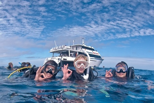 PADI Open Water Dive Certification, Cairns, Australia