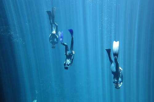 Freedive Training, Playa del Carmen, Mexico