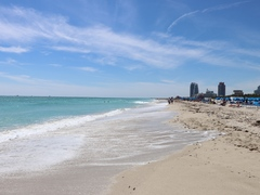 Top 5 Things to Do in Miami