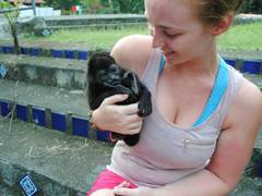 Costa Rica Animal Rescue Project (Sloths & More)