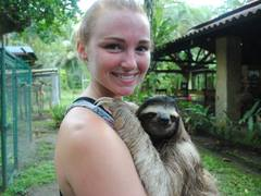 Volunteer with Sloths