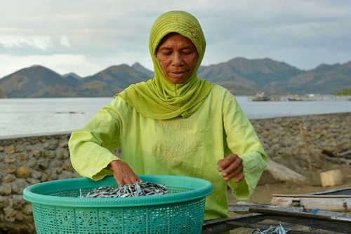 Charity Fundraiser to Help Marginalised Women in Indonesia