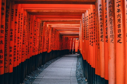 Useful Japanese Words & Phrases for Visiting Japan