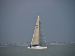 Tips & Advice for Sailing on The Solent