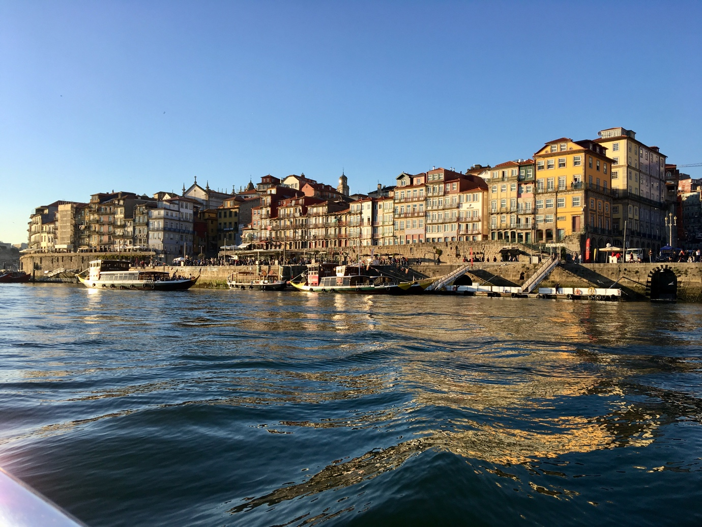 5 Amazing Things to Do in Porto