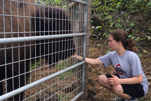 Exotic Animal Sanctuary (Hawaii)