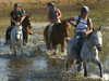 Horse Riding and Rhino Conservation