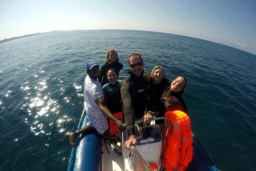 Sharklife Internship - South Africa