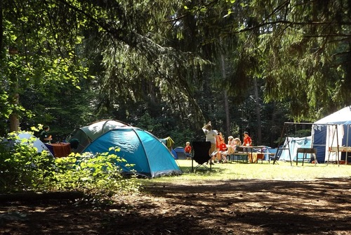 Best Family Camping Sites in California