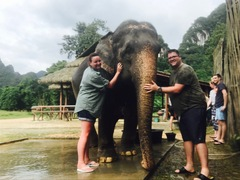 Why You Should Stay at Elephant Hills in Thailand