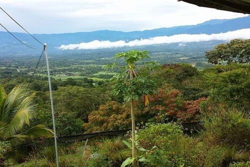 Volunteer in Costa Rica with Environmental Conservation Program - from just $27 per day!