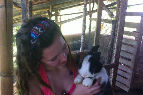 Volunteer in Costa Rica with Wildlife Conservation - from just $37 per day!