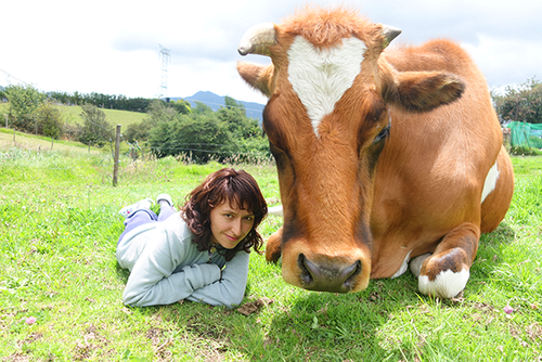 Volunteer at an Animal Sanctuary in Colombia